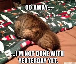 Lazy College Senior Meme - lazy college senior meme segerios com segerios com