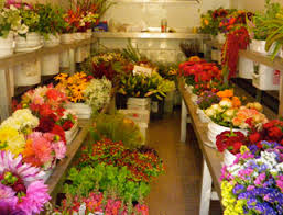 Wholesale Fresh Flowers Le Mera Gardens Medford U0026 Ashland Oregon Wholesale Organic
