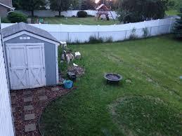 backyard updates diy