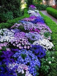 white flower garden dunneiv org