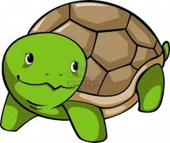 baby turtle cartoon free download clip art free clip art on