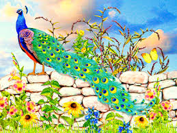 gallant peacock stone wall wallpapers gallant peacock stone wall