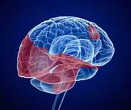 heart racing and light headed post concussion symptoms innova brain rehabilitation
