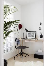 best 25 desk plant ideas on pinterest plant decor desk and
