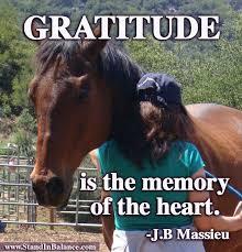 Gratitude Meme - gratitude is the memory of the heart stand inbalance