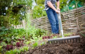 amending your vegetable garden this fall pesche u0027s