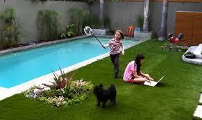 dog pool landscaping unique landscape