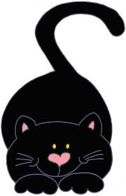 gatinho fofo my black cat pinterest cat black cats and kitty