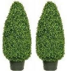 boxwood cone topiary artificial plants outdoor