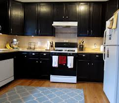 Black Stained Kitchen Cabinets Home Yeolab - Black stained kitchen cabinets