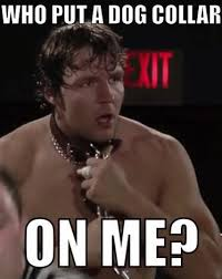Dean Ambrose Memes - dean ambrose meme google search wwe fangirling pinterest