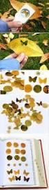 best 25 pressed flower craft ideas on pinterest decorating