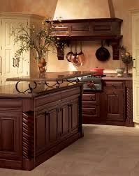fancy kitchen cabinets bibliafull com