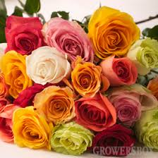 Wholesale Roses Capitalizing On Carnations By Fundraising With Flowers From The