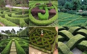 landscaping borders around trees ortega lawn care