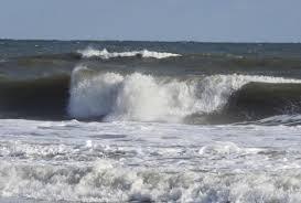 surf crew feed swellinfo