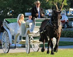 florida st patricks day horse and carriage wedding at museum of
