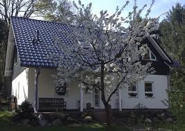Wohnhaus Kaufen Gesucht Wohnzimmerz Haus Kaufe With Rehfelde Nahe Strausberg Haus Kaufen