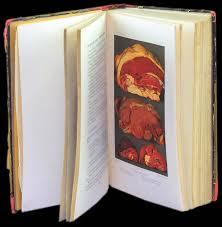 cours de cuisine v馮騁arienne livre de cuisine v馮騁arienne 28 images le livre d or de la