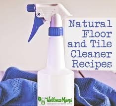 floor cleaner recipe wellness