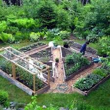 Fruit Garden Layout Fruit Garden Ideas Pictures Gallery Of Beautiful Garden Layout