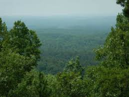 Alabama forest images Most amazing forests in alabama jpg
