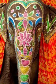 best 25 indian elephant ideas on pinterest indian elephant art