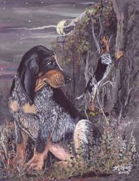 bluetick coonhound sale bluetick coonhound puppy dreamer painting at artistrising com