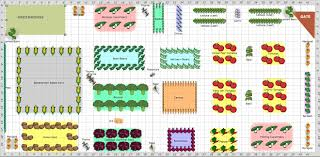 how to plan a vegetable garden layout garden plan companion veggie garden