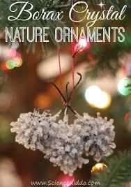 borax nature ornaments the science kiddo
