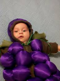 Halloween Grape Costume Infant Bundle Grapes Costume 6 Steps