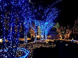 blue and white led lights lights decoration