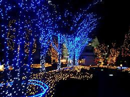 blue and white christmas lights christmas lights decoration