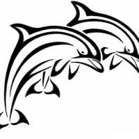 tribal dolphin couple on black sihing sun background tattoo design