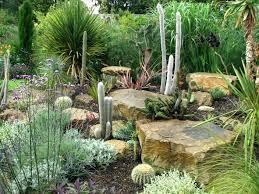 Cactus Garden Ideas Cactus Landscaping Ideas Split Rock Cactus Garden Cactus Pot Plant