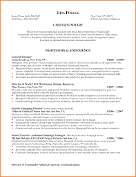 Sample Resume For Ceo by Sample Resume Ceo Resume For Your Job Application