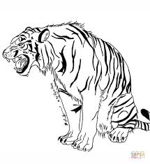 fancy tiger coloring pages 28 free tiger coloring