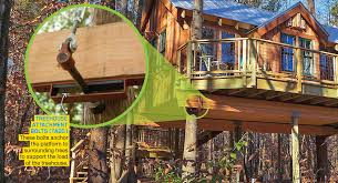 three house out treehouses