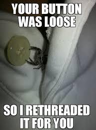Spider Bro Meme - thanks spider bro hey where s my zipper imgur