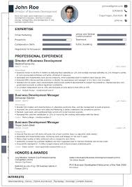 cv examples business development manager