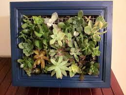 fancy sign semidiy then vertical succulent planter plus