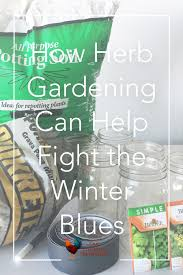 how herb gardening can fight the winter blues
