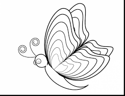 marvelous butterfly and flower coloring pages with butterflies