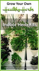 Indoor Herb Garden Kit Indoor Herb Growing Kits Grow Your Own Healthy Organic Herbs At Home