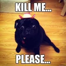 Please Kill Me Meme - kill me please afraid dog quickmeme