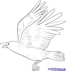 flying raven coloring page