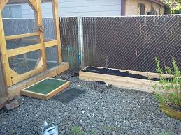 How To Keep Backyard Chickens by An Idea On How To Keep Grass Alive In The Chicken Pen Backyard
