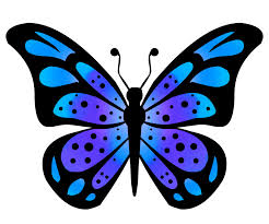 butterflies cartoon butterfly clipart clipartix