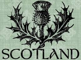 Scottish Tattoos Ideas 49 Best Tattoos Images On Pinterest A Phoenix Drawings And