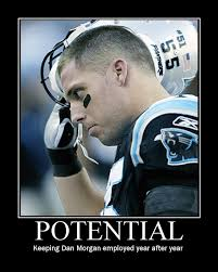Funny Panthers Memes - funny panthers memes 28 images the top 10 best blogs on football